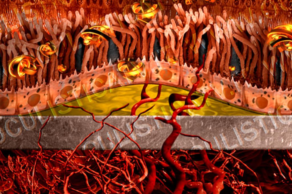 degenerazione maculare secca terapia